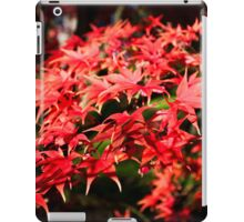 Bright red Acer tree leaves iPad Case/Skin