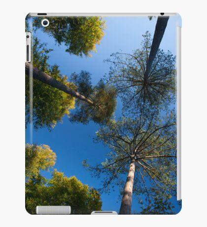 Abstract trees iPad Case/Skin