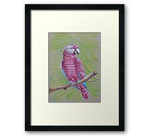 The Talking Bird Framed Print