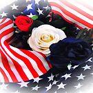 """Veterans Day"" by Anthony Cherubino"