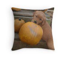 Ben- I Pick This Pumpkin Throw Pillow