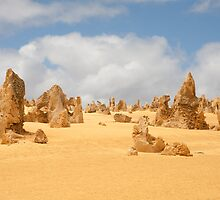 The Pinnacles at Nambung National Park Western Australia by Leonie Mac Lean