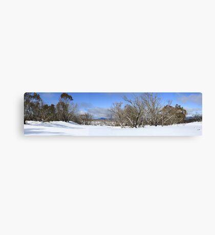 August snow scene Canvas Print
