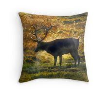 2013.SEP Evening Respite Throw Pillow