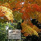 Fall in Nevada City by Patty (Boyte) Van Hoff