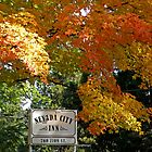 Fall in Nevada City by Patty Boyte