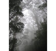 The Mists of Mordor.....(or Olinda) Photographic Print