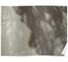 Random weave shadows #6 Poster