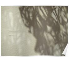 random weave shadows #7 Poster