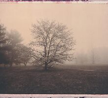 Lums Pond in Fog 10 by billwolff