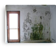 Mouldy Wall Canvas Print