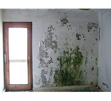 Mouldy Wall Photographic Print