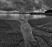 Days Bay by Peter Kurdulija