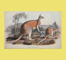 A monograph of the Macropodidæ or family of kangaroos John Gould 1842 002 Macropus Laniger Baby Tee