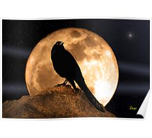 Crow In The Moon Poster