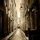 Door open in a laneway in Paris France, in sepia by Elana Bailey