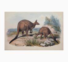 A monograph of the Macropodidæ or family of kangaroos John Gould 1842 016 Macropps Fuliginosps Kids Tee