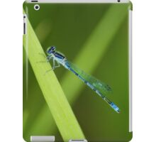 Blue Dragonfly iPad iPad Case/Skin