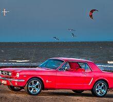 Mustang by Steven Shadbolt