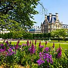 I love Paris in the Springtime by Elana Bailey