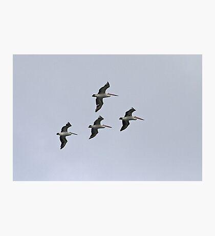 The Squadron Photographic Print