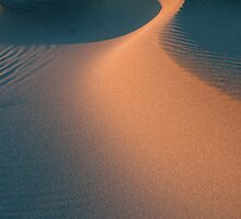 Sand dune texture in the Camargue by Michael Brewer