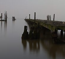 Abandoned pier on the Hudson by Robert Wirth