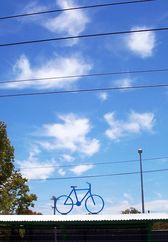 The Bicycle One - 13 11 12 by Robert Phillips