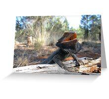 Eastern Bearded Dragon Greeting Card