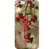 Berries and flowers iPhone Case/Skin