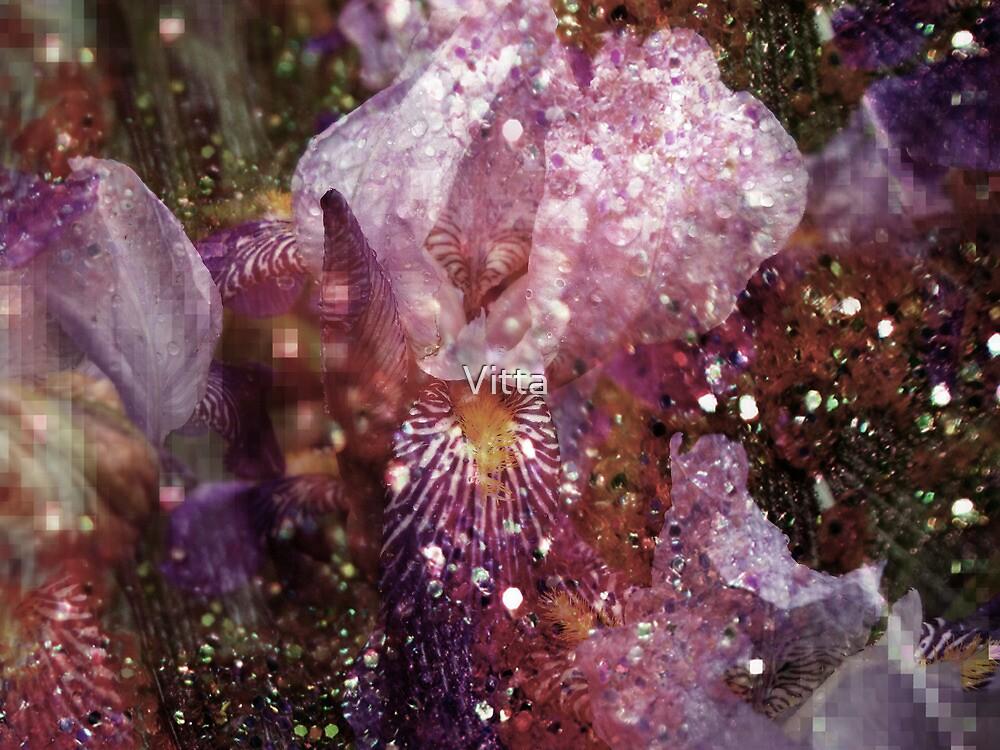 Abstract Iris. by Vitta