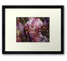 Abstract Iris. Framed Print