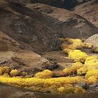Pretty Valley by Robert Dettman