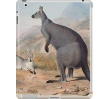 A monograph of the Macropodidæ or family of kangaroos John Gould 1842 005 Petrogale Robustus iPad Case/Skin