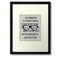 NUMBERS GEEK Framed Print