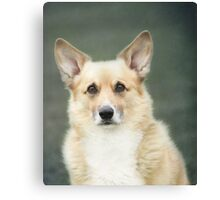 Kabo's Birthday Portrait ~ Canvas Print