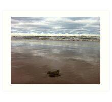 frog on lake michigan Art Print