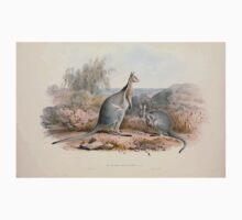 A monograph of the Macropodidæ or family of kangaroos John Gould 1842 003 Macropus Fraentus Kids Tee