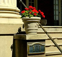 A City Stoop (#101) by ctheworld