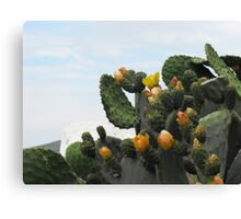 Greek Island Orange Cactus Canvas Print