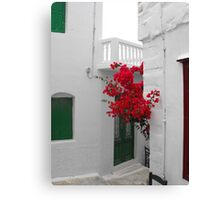 Greek Island street and flowers Canvas Print