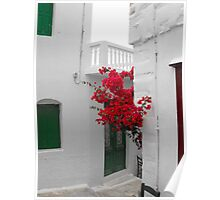 Greek Island street and flowers Poster