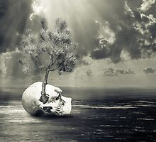 Death and life by AAPlus