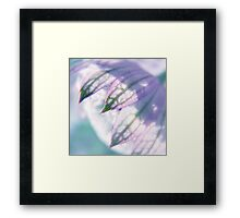 lost in a daydream Framed Print