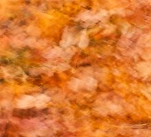 Abstract Autumn Leaves (iPad Case) by April Koehler