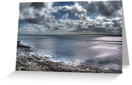 Lindisfarne Castle View by Colin Metcalf