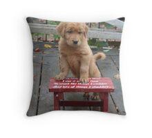 Deke-  I Love This Stool Throw Pillow