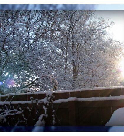 Sun's Rays on Snow Sticker