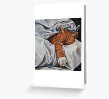 Mucky Paws - Mr Tibbs Greeting Card