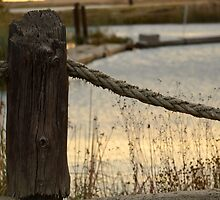 Old Marina Fence by HanieBCreations